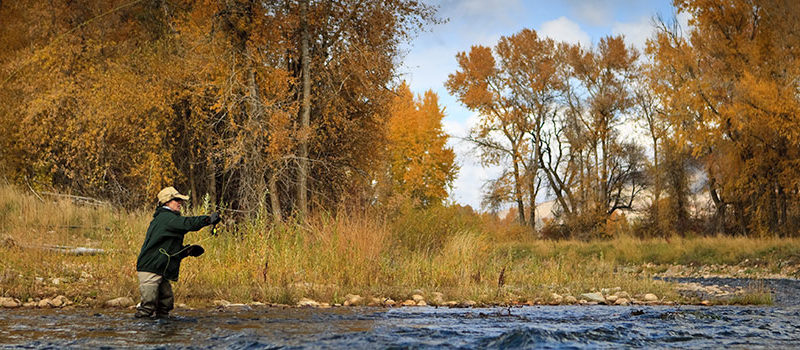 Fishing Provo River