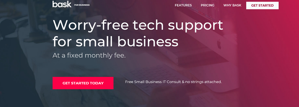 Bask Rebrands Small Business Tech Support Division, Digity, as Bask for Business