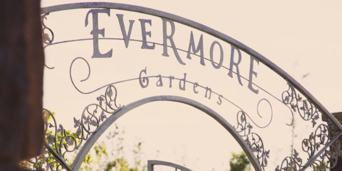 A peek into Evermore. Utah's newest, and most adventurous, theme park.