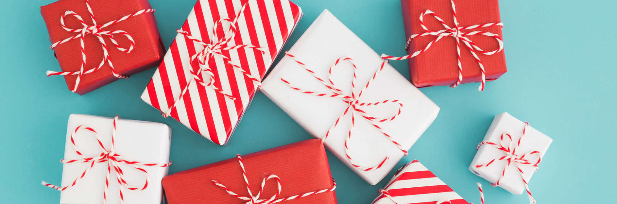 Planning on making a holiday donation? Check out this nonprofit gift guide.